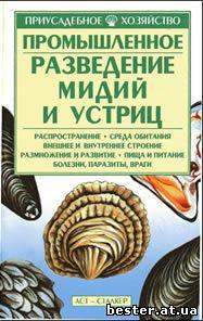 Разведение устриц и мидий. рыбоводство